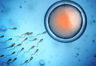 Bệnh viêm vùng chậu có sinh con được không?