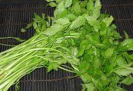Cách chữa đau bụng kinh bằng thuốc nam từ rau cần