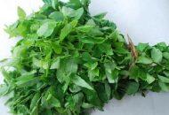 Cách chữa đau bụng hành kinh bằng các loại rau trong vườn